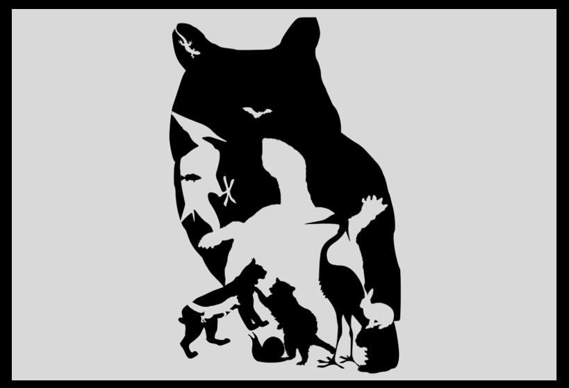 animaux1 1