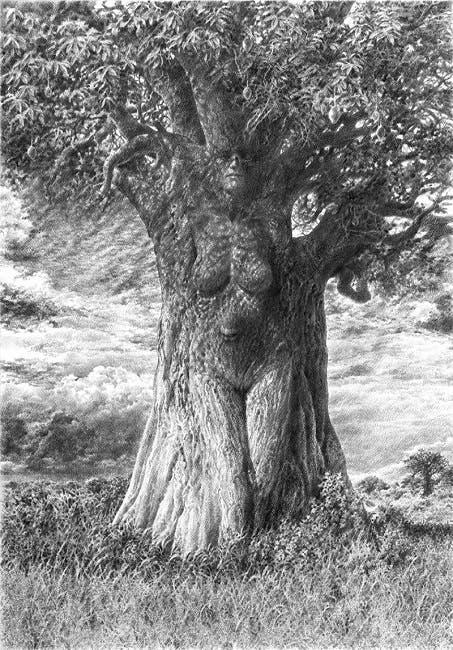arbre 3