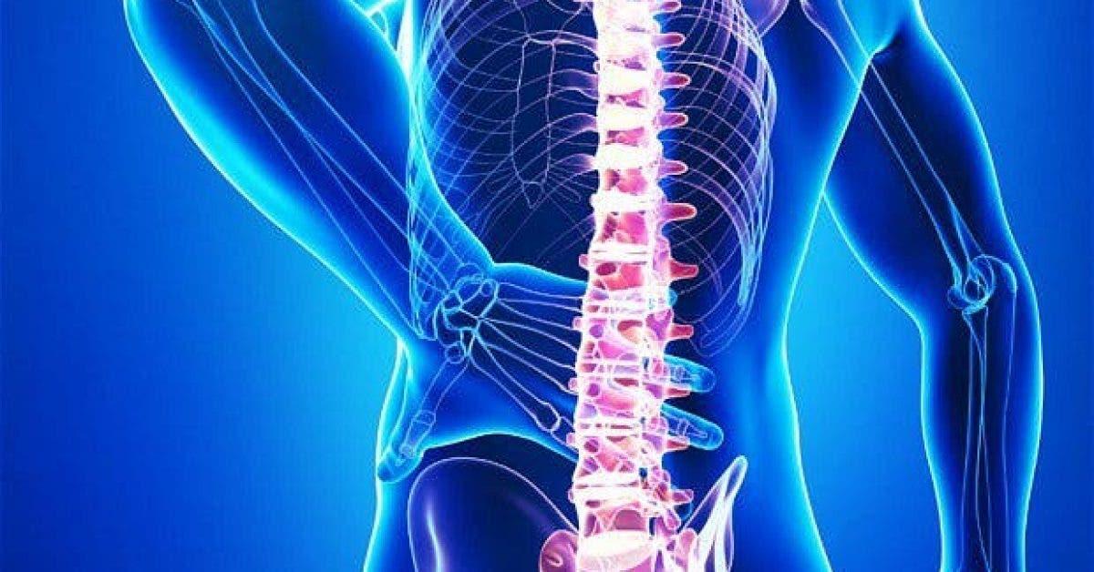 back pain 2630038b 1