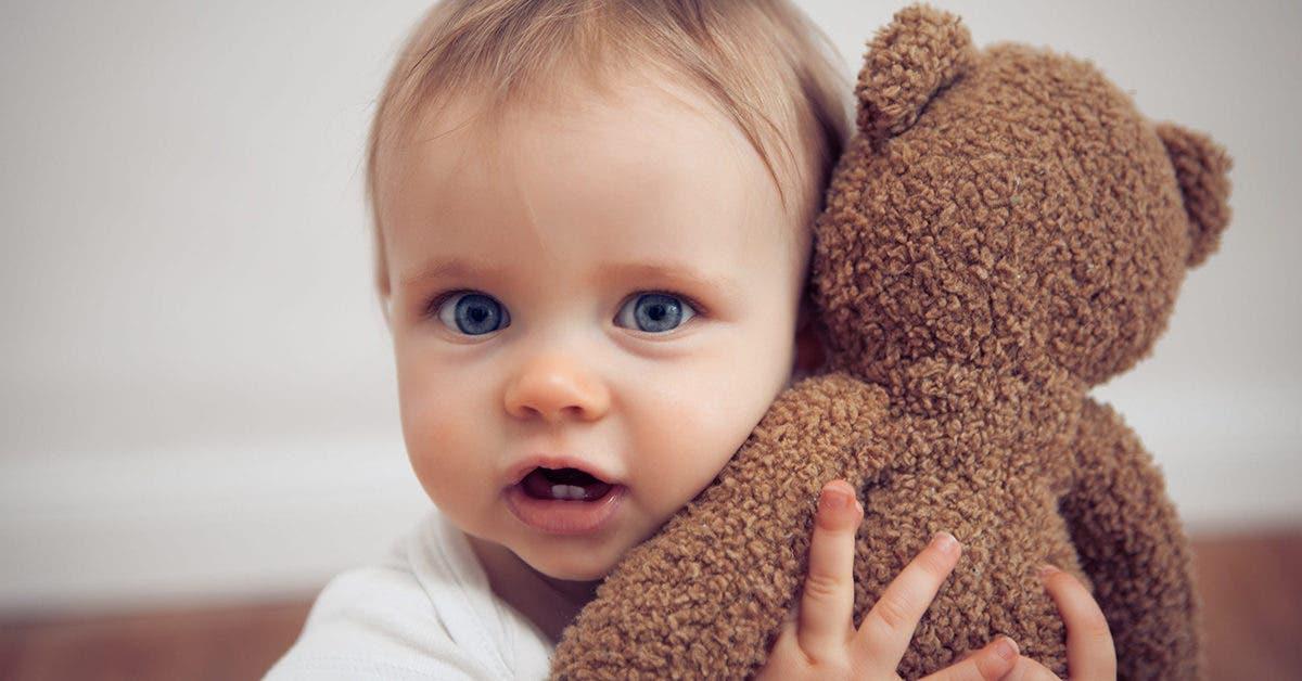 Si les mères connaissaient leur importance, elles laisseraient leurs enfants « avoir un doudou »