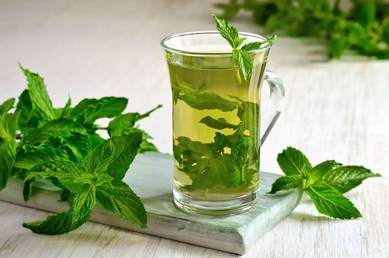 boissons qui aident à perdre du poids