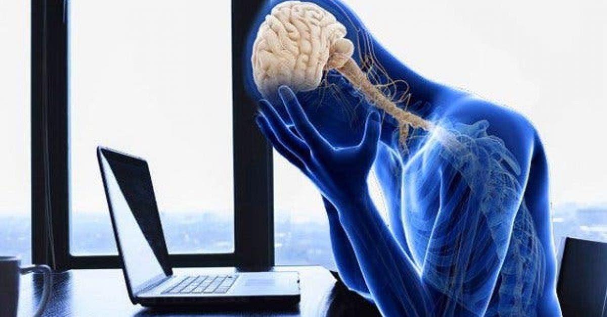bon a savoir ce qui arrive a votre corps lorsque vous etes stresse 1