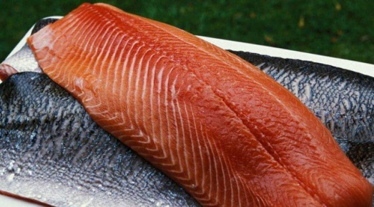 ce-poisson-populaire-est-lun-des-aliments-les-plus-toxiques-au-monde-voila-pourquoi-vous-ne-devriez-plus-le-manger