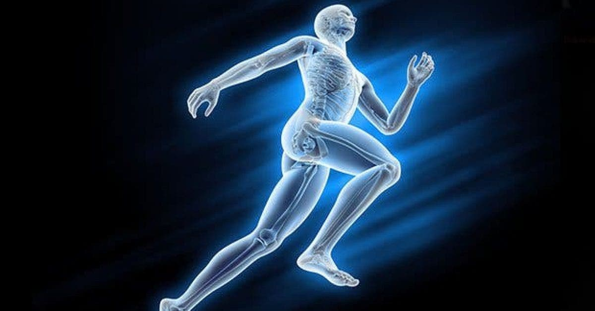 ce-puissant-anti-oxydant-detoxifie-le-corps