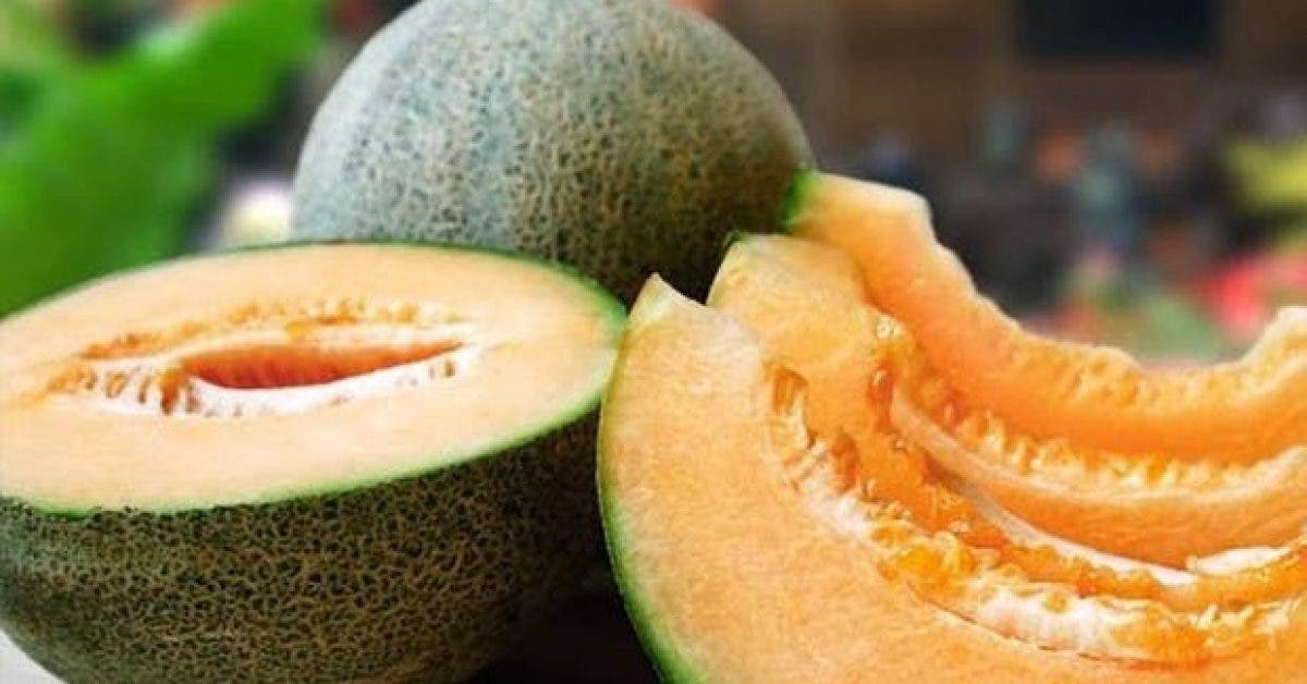 ce que fait le melon a votre corps 1