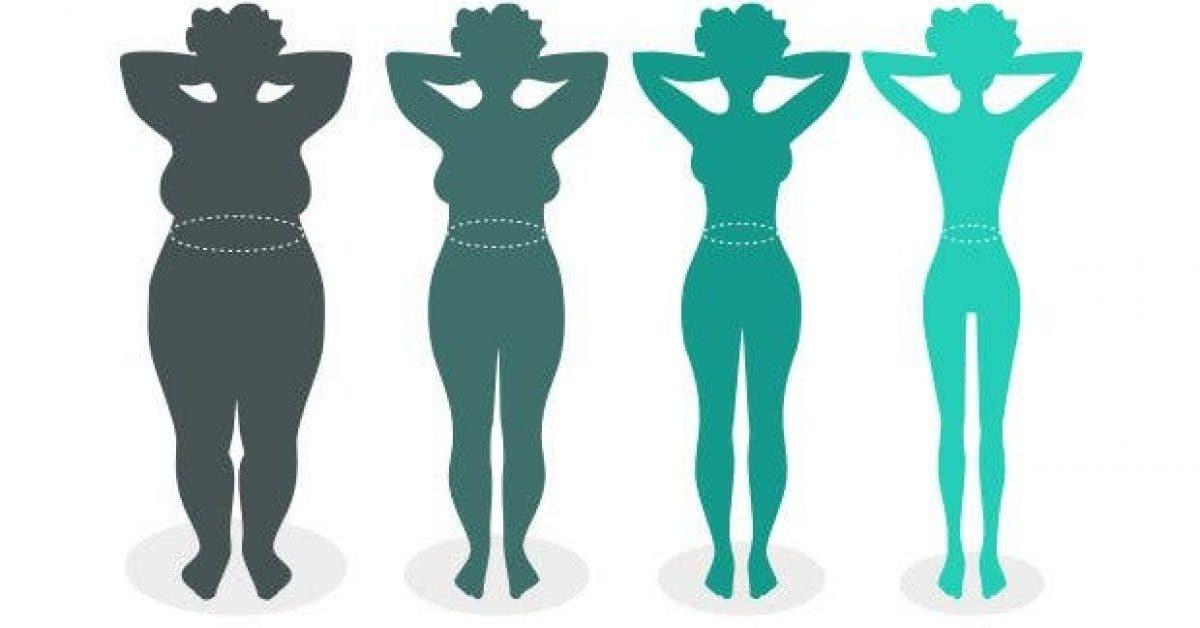 ce que la forme de votre ventre dit sur votre capacite a perdre du poids11