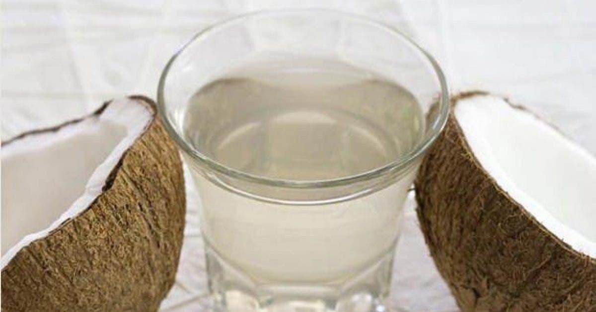 ce qui arrive a votre corps lorsque vous buvez de leau de coco pendant deux semaines 1