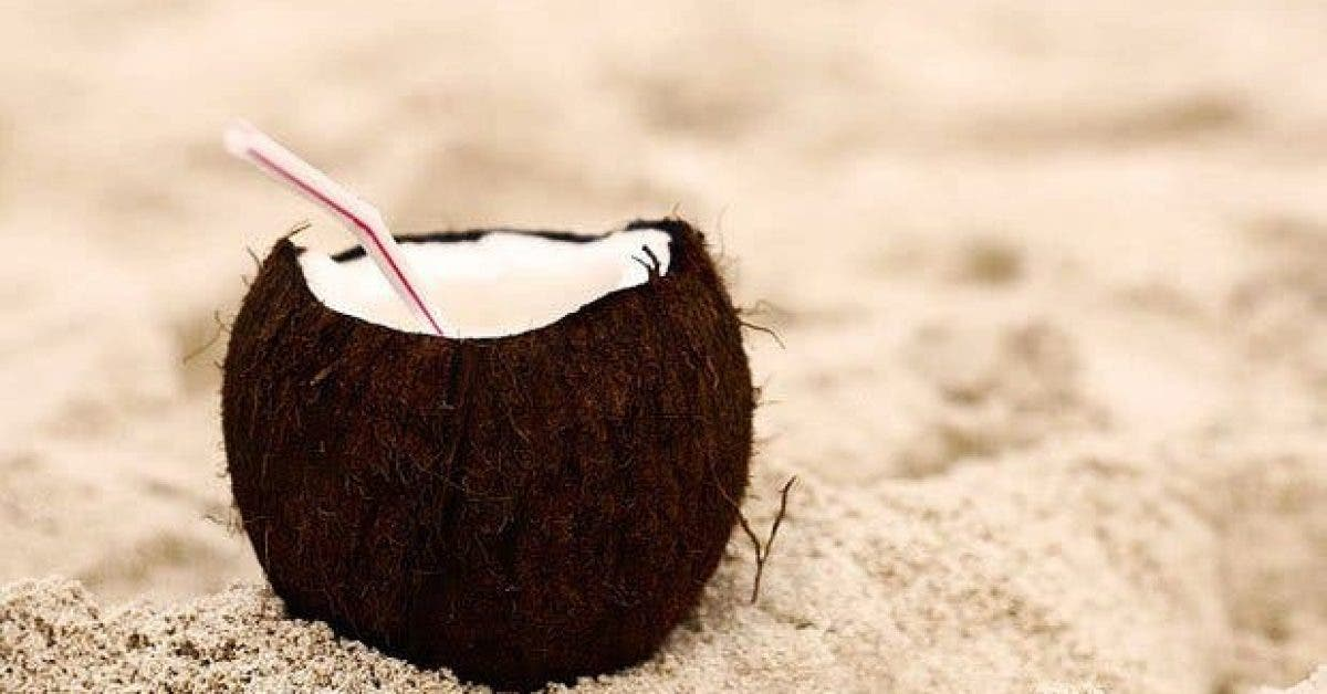 ce qui arrive a votre corps lorsque vous buvez leau de noix de coco2