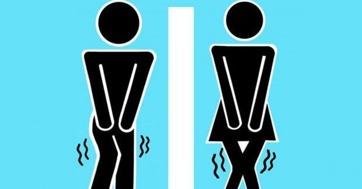 ce qui arrive lorsque vous nallez pas aux toilettes 1 1