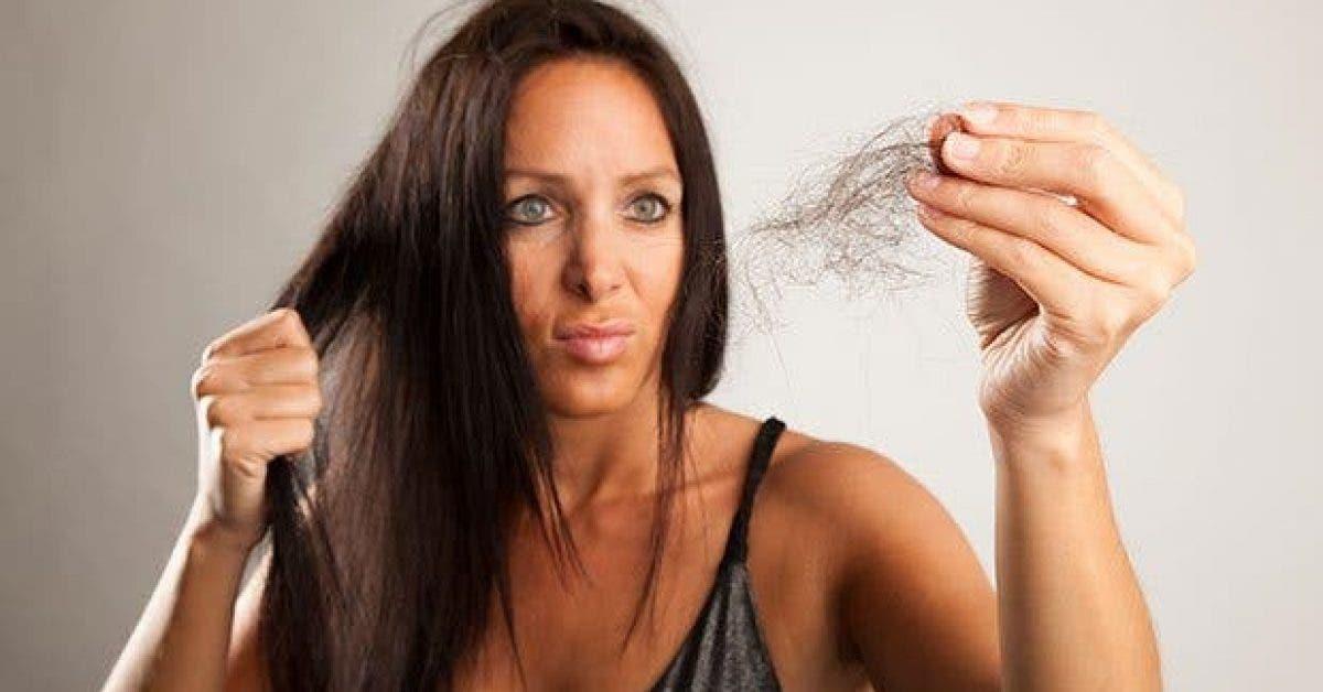ce quil faut savoir si vous perdez vos cheveux11