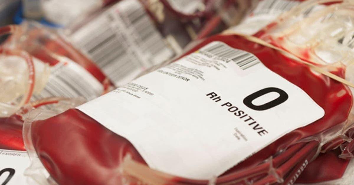 ce-quil-faut-savoir-sur-les-personnes-du-groupe-sanguin-o