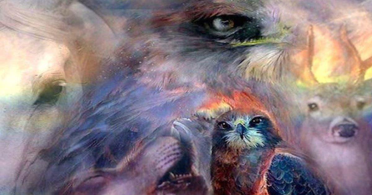 ces-10-animaux-apportent-un-message-quand-ils-apparaissent-dans-votre-vie