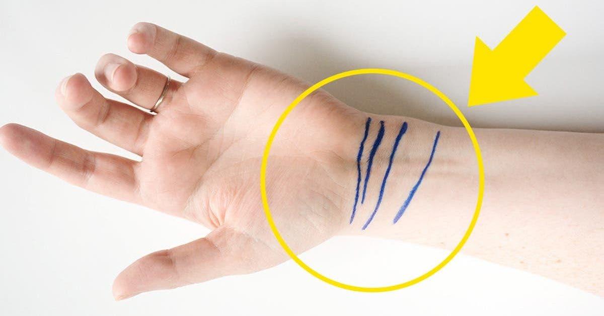 ces-4-lignes-sur-votre-poignet-revelent-votre-etat-de-sante-et-votre-avenir-dapres-la-chiromancie