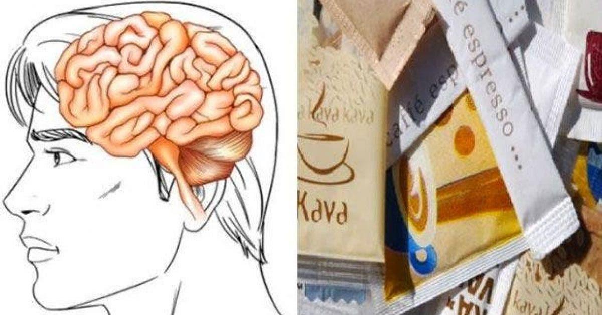 ces 4 produits chimiques du quotidien detruisent votre cerveau 1