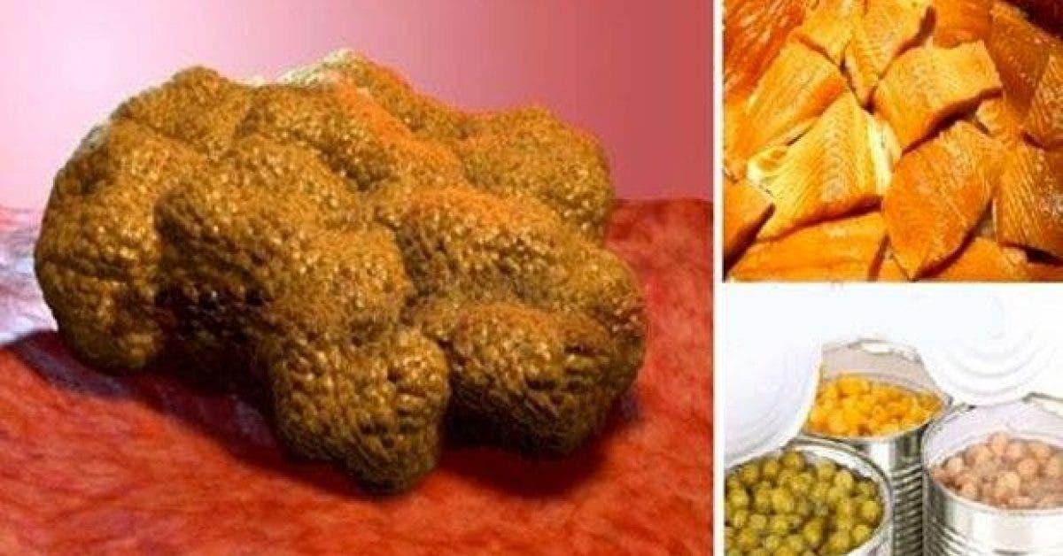 ces 9 aliments favorisent lapparition de cellules cancereuses arretez den manger 1