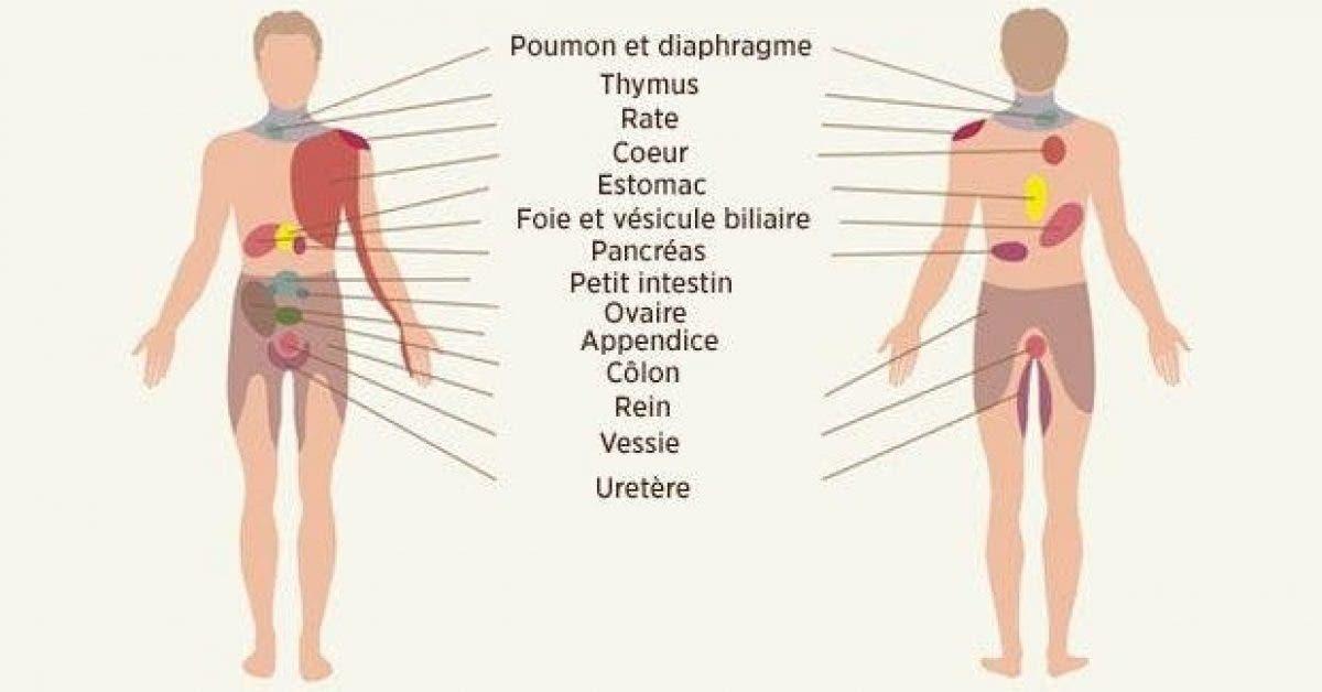 ces 9 douleurs cachent des maladies 1