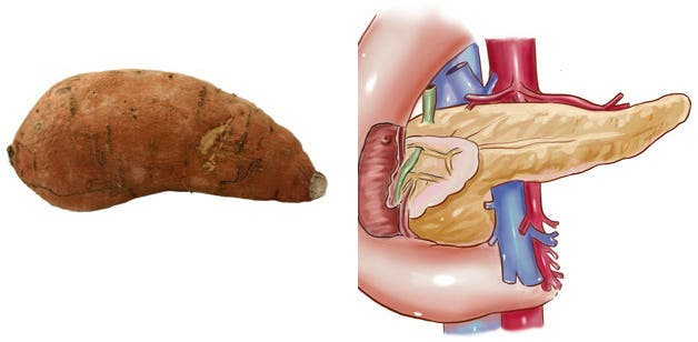 ces-aliments-ressemblent-aux-organes-quils-guerissent-patate-douce-pancreas