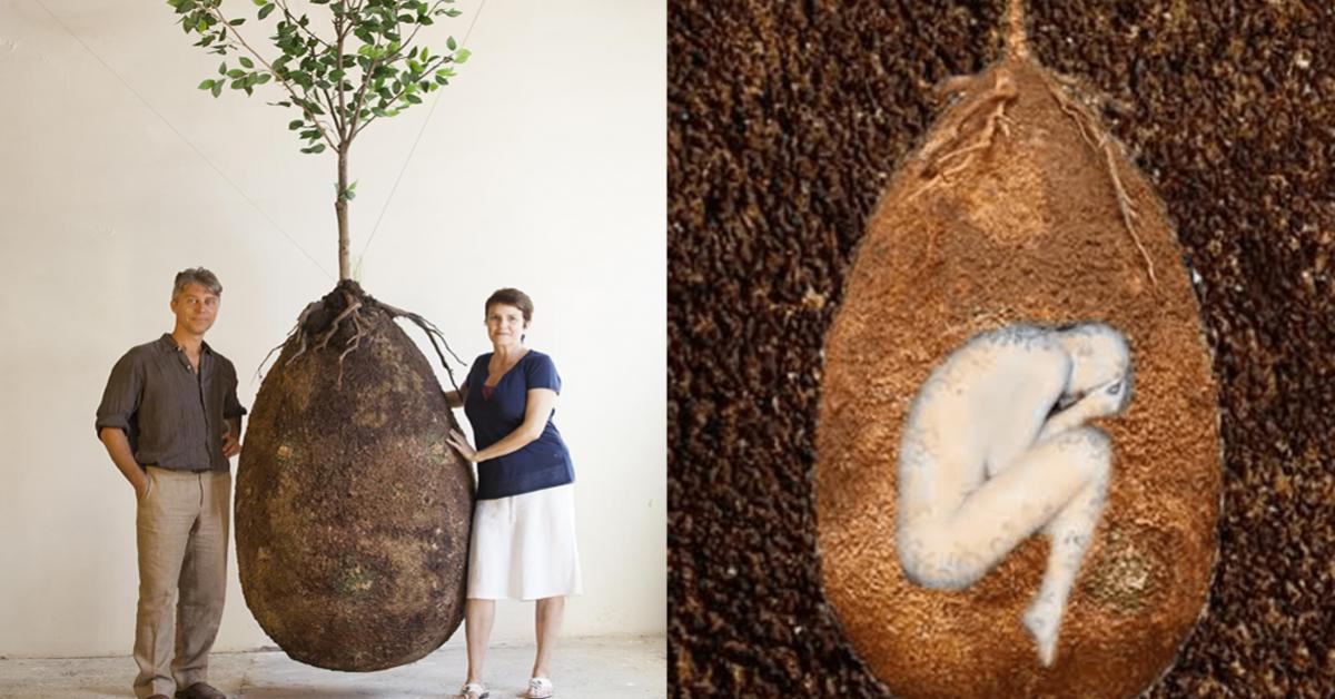 ces-capsules-denterrement-organiques-remplacent-les-tombes-par-des-arbres