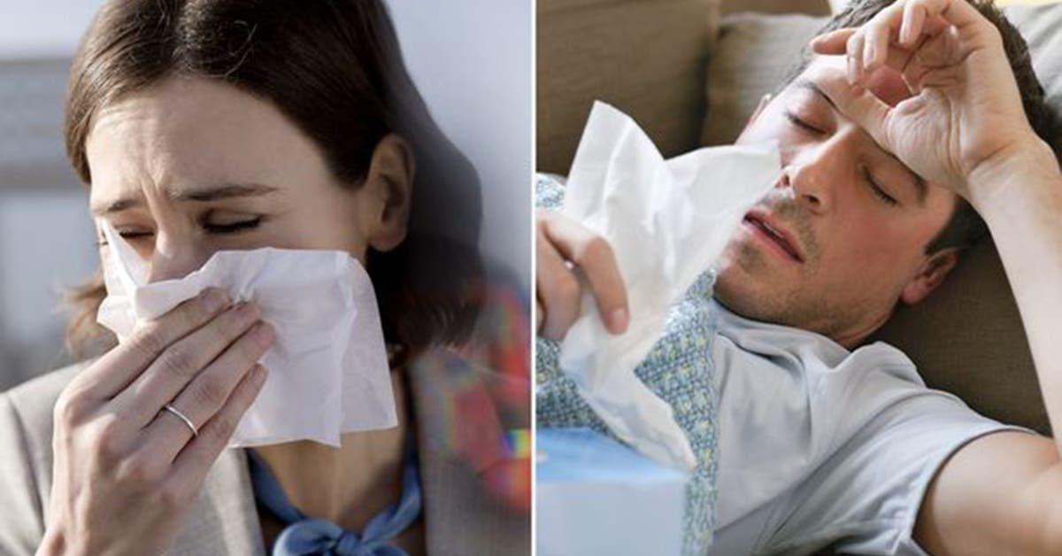 cest prouve faire lamour est un remede contre la grippe et le rhume 1