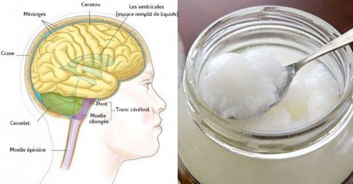 cet aliment ameliore les fonctions cerebrales immediatement 1
