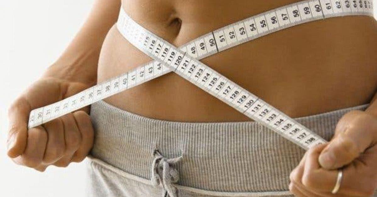 cet aliment est ideal pour le cerveau et peut vous aider a perdre plusieurs kilos rapidement 2 1