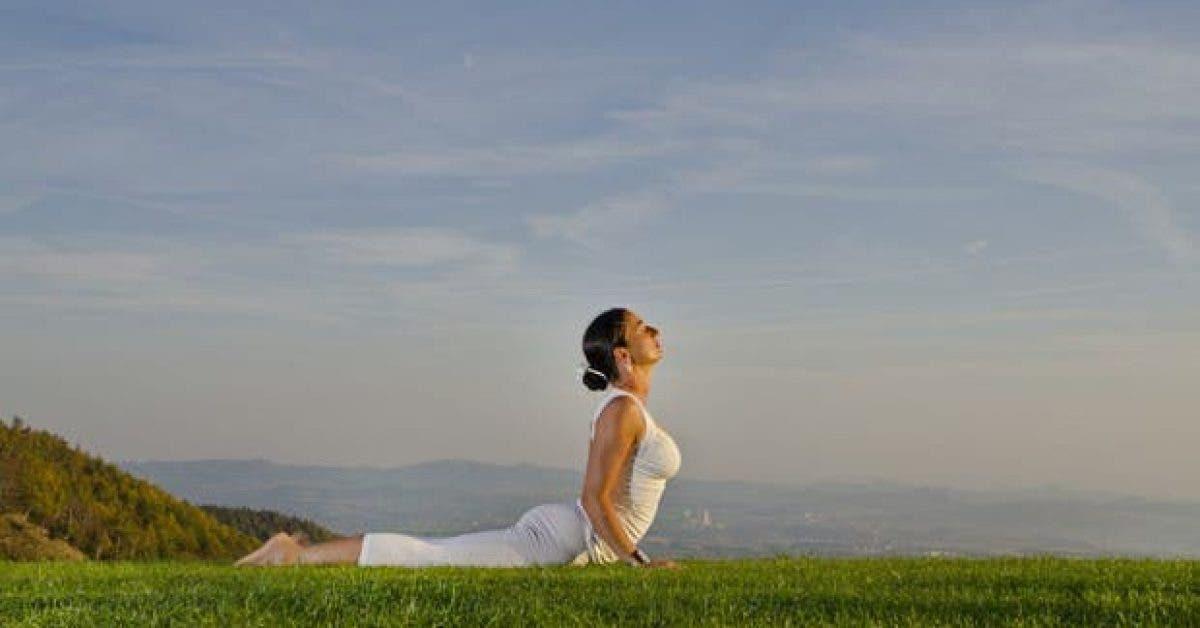 cet exercice permet davoir une bonne posture du corps 1