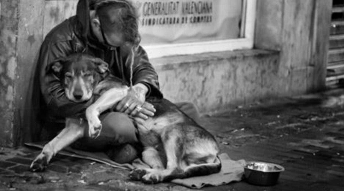 cetait-mon-seul-ami--un-sans-abri-pleure-toutes-ses-larmes-pour-son-chien-ecrase