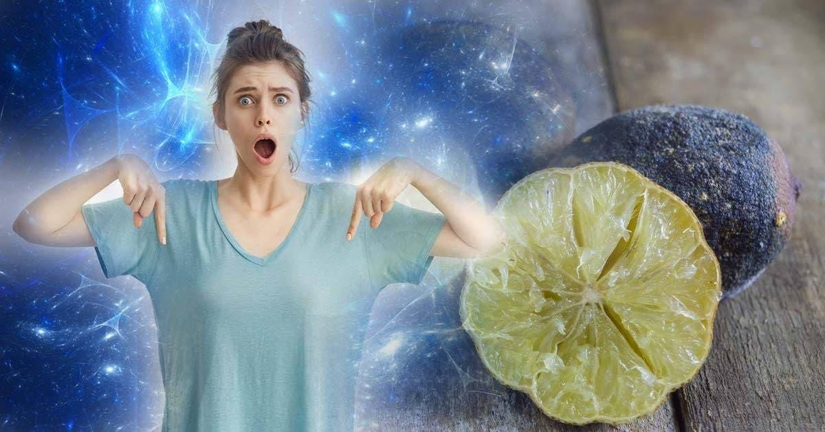 cette ancienne astuce au citron elimine toutes les energies negatives de votre maison et de votre vie 1