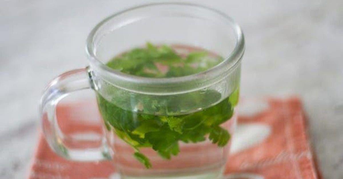 cette boisson brule les graisses et nettoie le corps des toxines 1