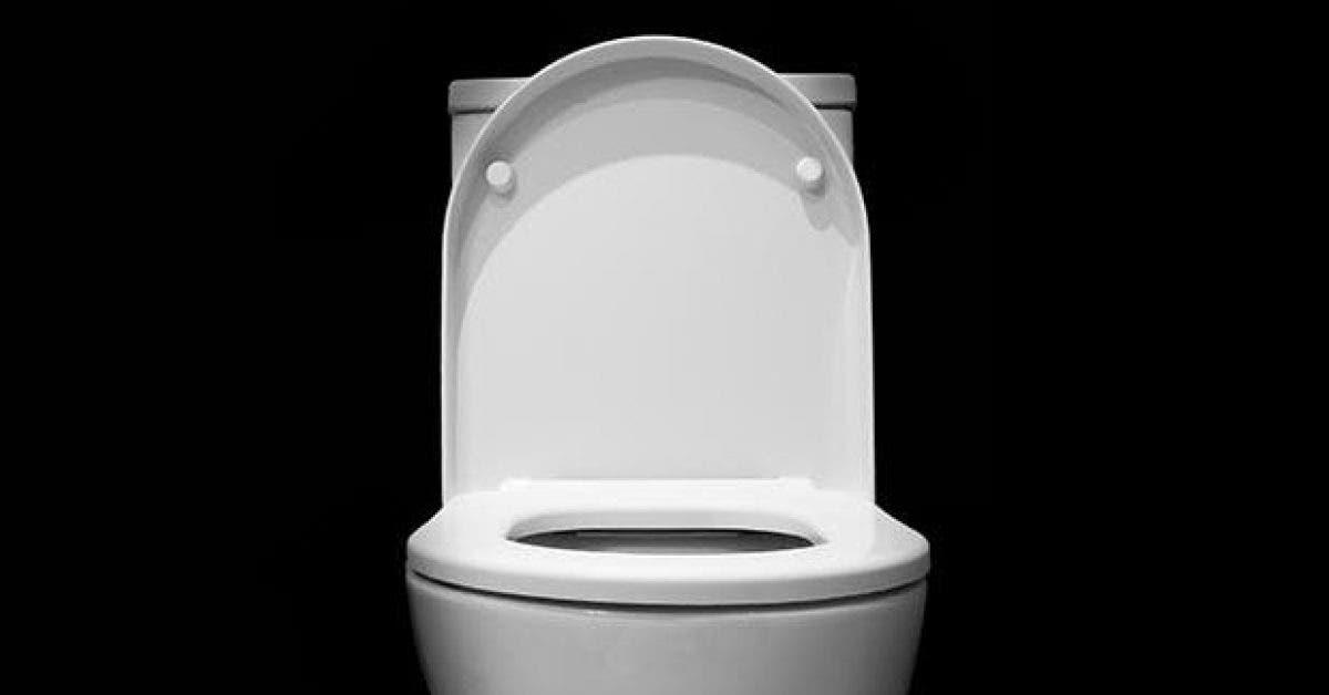 cette facon daller aux toilettes peut changer votre vie 1 1