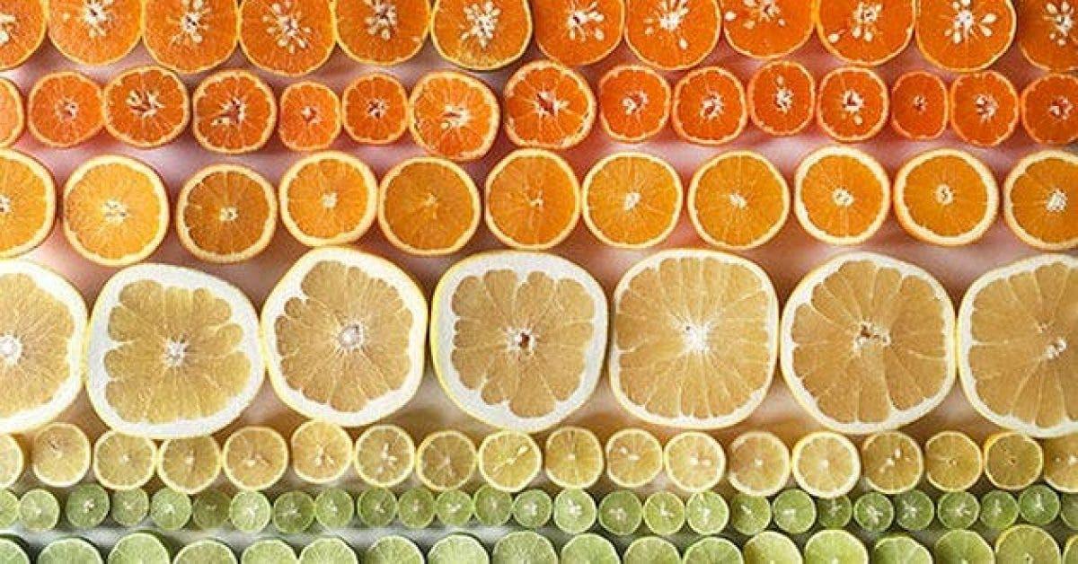 cette femme a fait dincroyables photos de fruits et legumes2