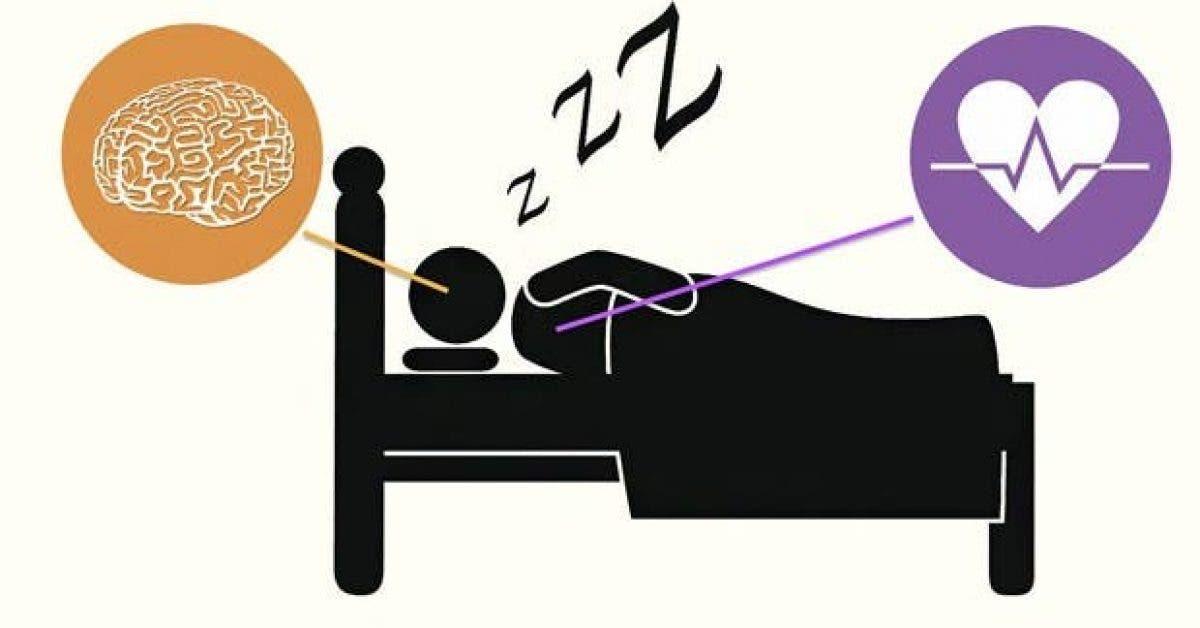 ceux qui dorment bien ont rarement ces 5 dangereuses maladies 1