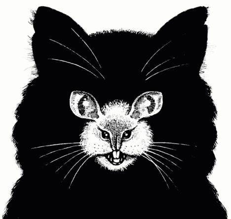 Un chat ou une souris