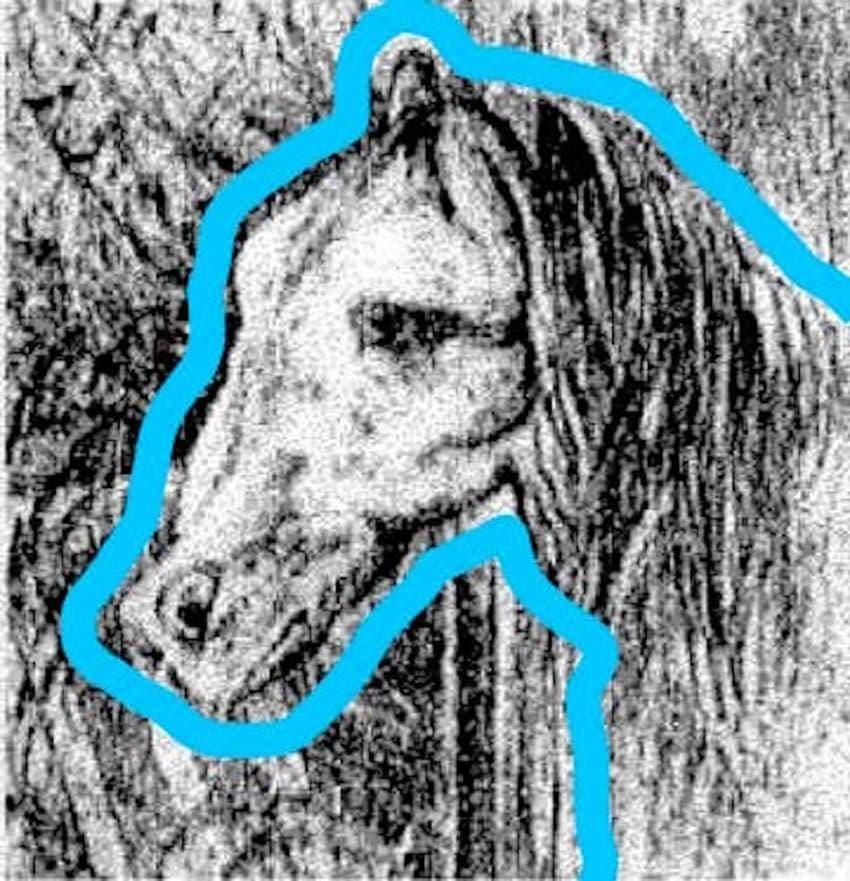 Pouvez-vous repérer le cheval sur l'image