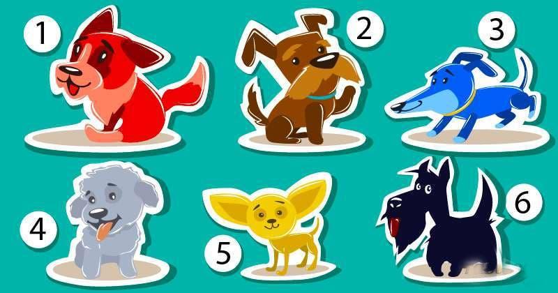 Le chien que vous choisirez révèle la manière