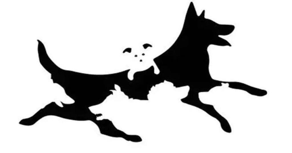 chiens1
