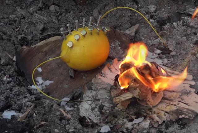 citron4 1