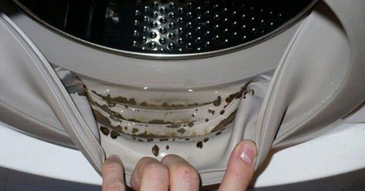 comment enlever les moisissures dangereuses et les odeurs desagreables de votre machine a laver 1