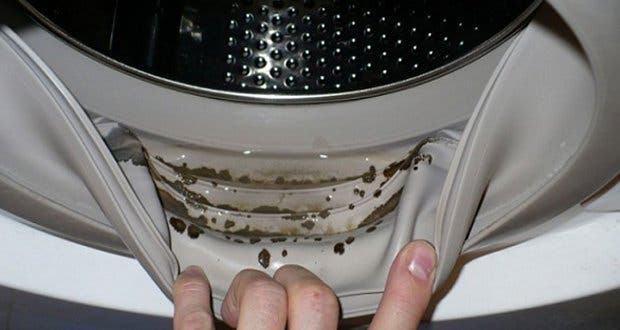 comment enlever les moisissures dangereuses et les odeurs