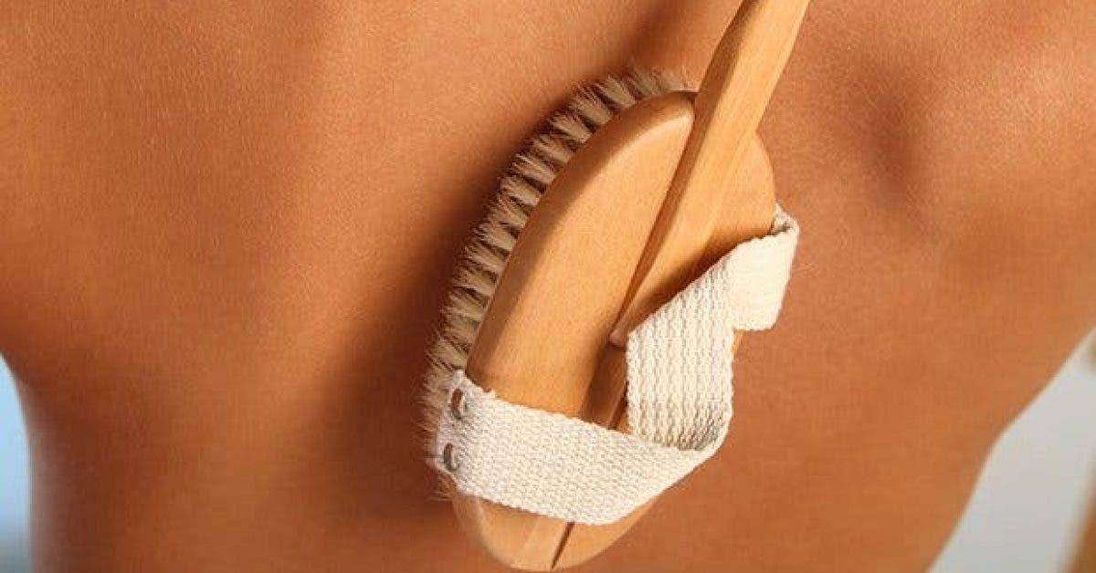 comment-le-brossage-a-sec-peut-changer-votre-peau-et-votre-sante