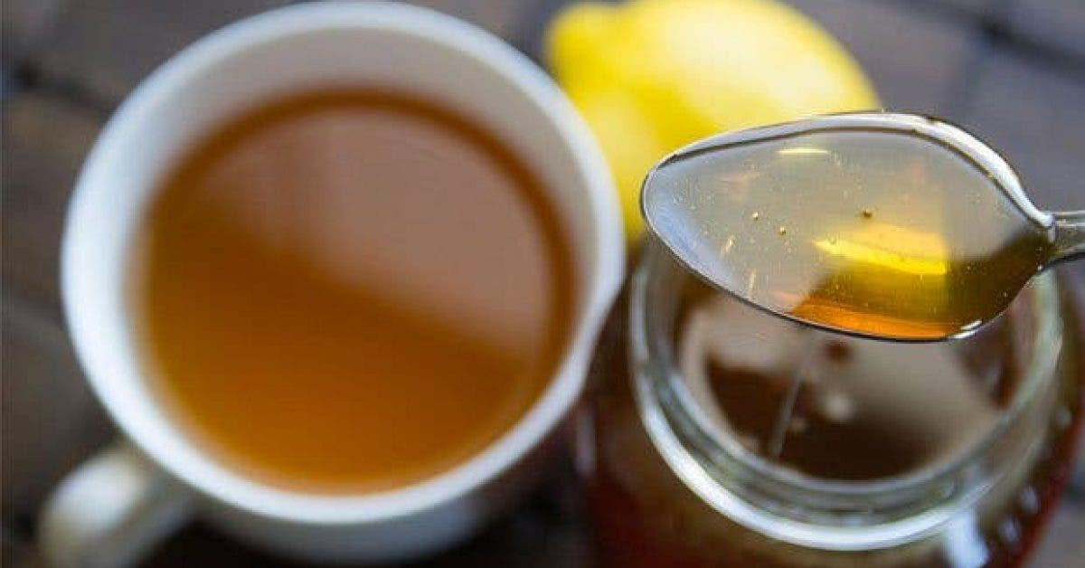 comment-le-miel-lutte-t-il-contre-le-cancer