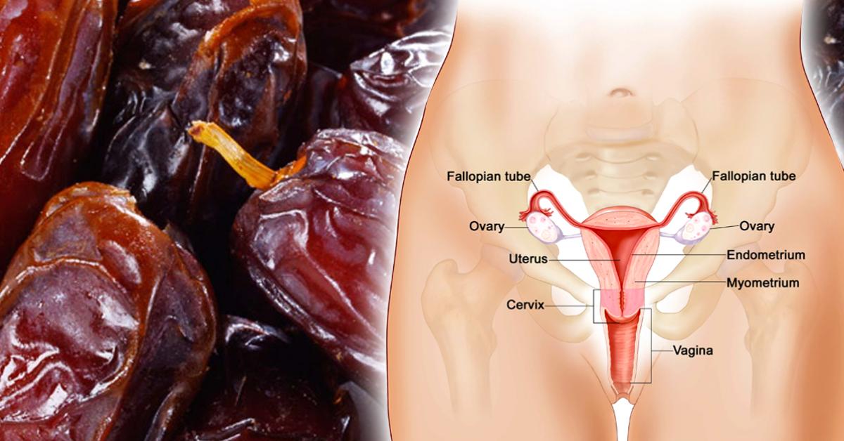 comment-les-dattes-lubrifient-le-vagin-previennent-les-rapports-sexuels-douloureux-ameliorent-la-libido-chez-les-femmes
