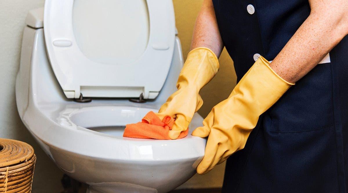 comment-nettoyer-des-toilettes-sales-et-eliminer-lodeur-de-pipi-sur-le-canape-le-matelas-et-la-salle-de-bain