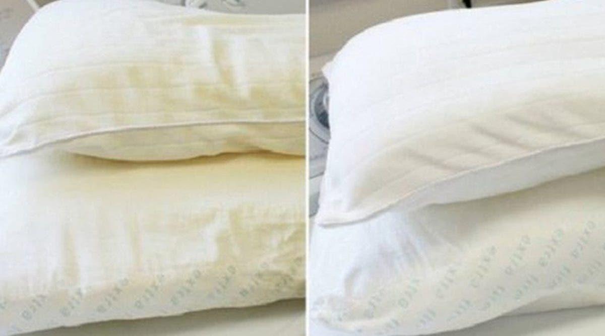 comment-nettoyer-les-oreillers-jaunis-par-le-temps