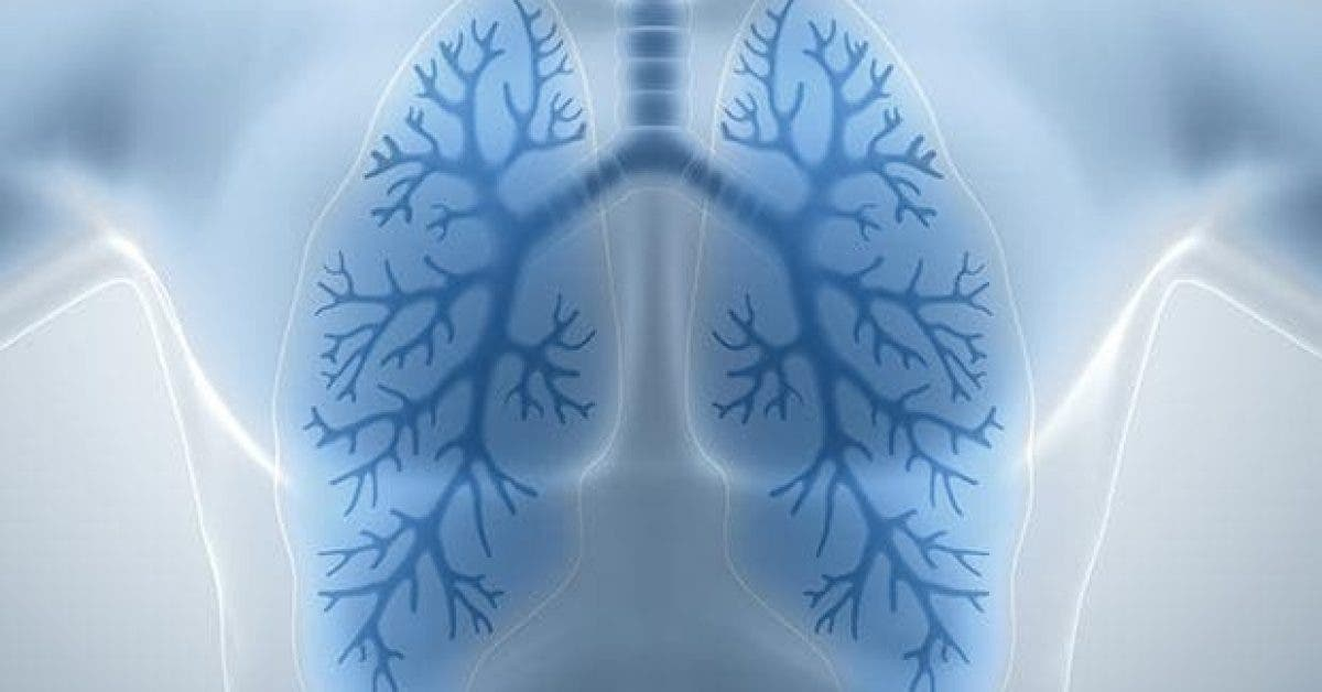 comment nettoyer ses poumons naturellement11