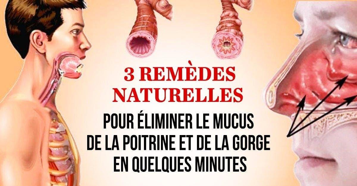 comment retirer le mucus et le flegme de la poitrine et la gorge 1 1