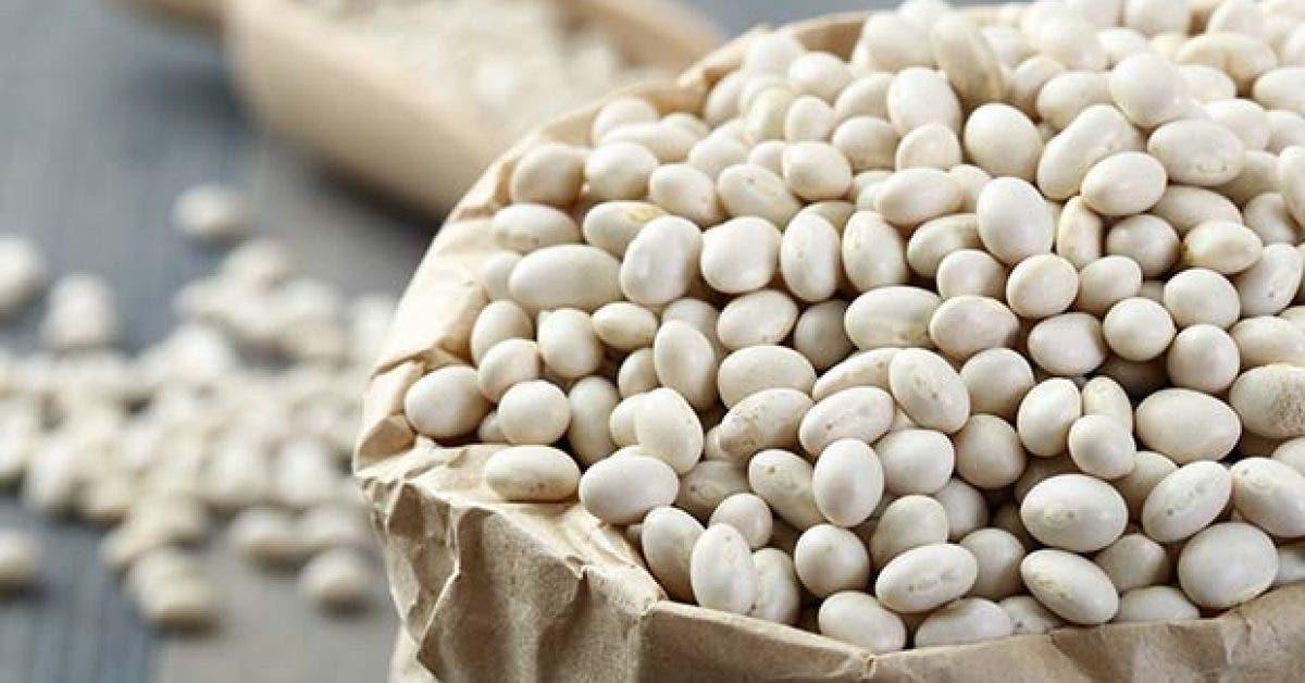 comment utiliser les haricots blancs pour maigrir11