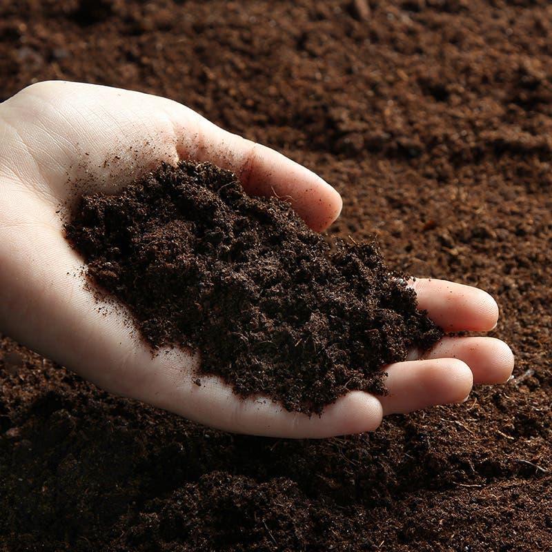 compost bio