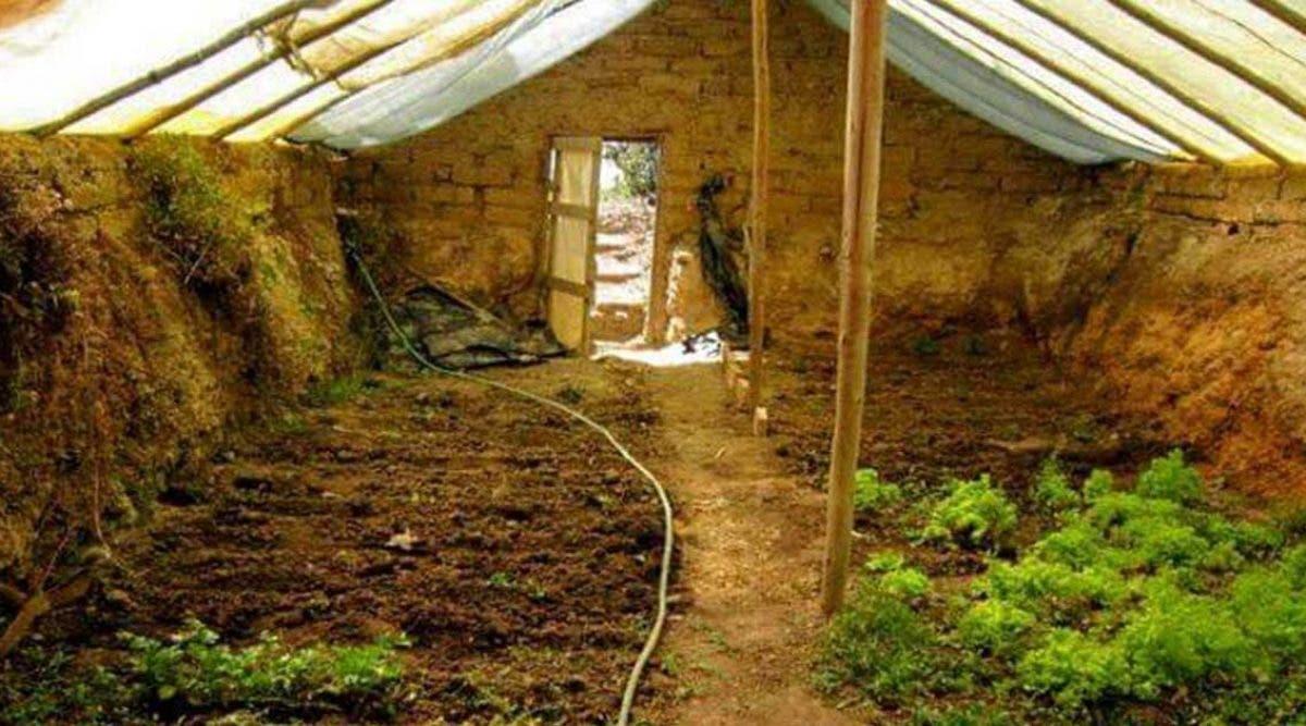 construisez-une-serre-souterraine-a-moins-de-300-euros-pour-avoir-des-aliments-frais-toute-lannee