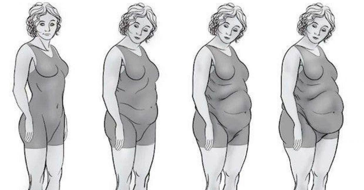 decouvrez 4 types de ventre et comment vous en debarrasser 1